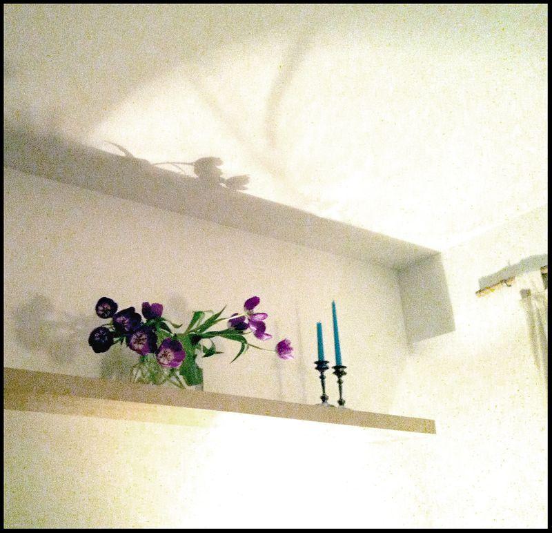 Flowers&light